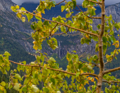Chill and Thrill - Glacier NP