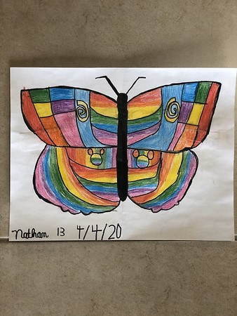 Butterfly Symmetry Projects for Geometry  (Distance Learning)