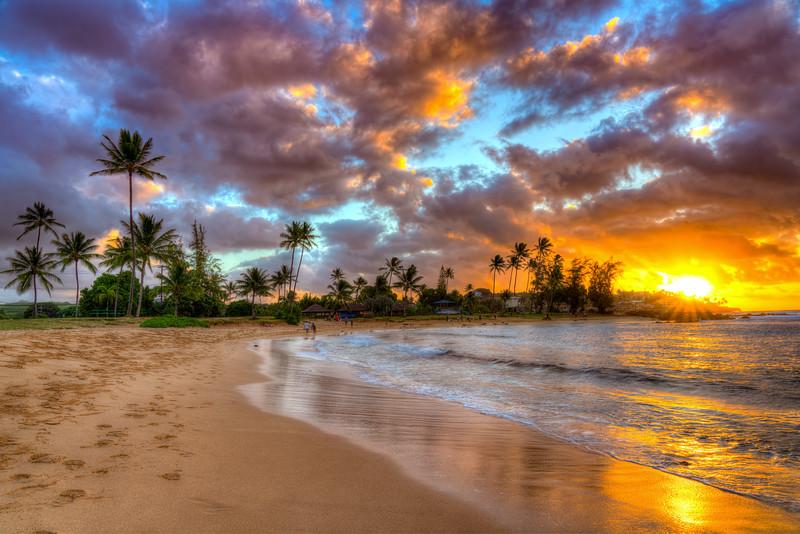 Hawaii 2019-1.jpg