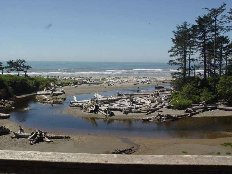 View from room - Kalaloch Lodge