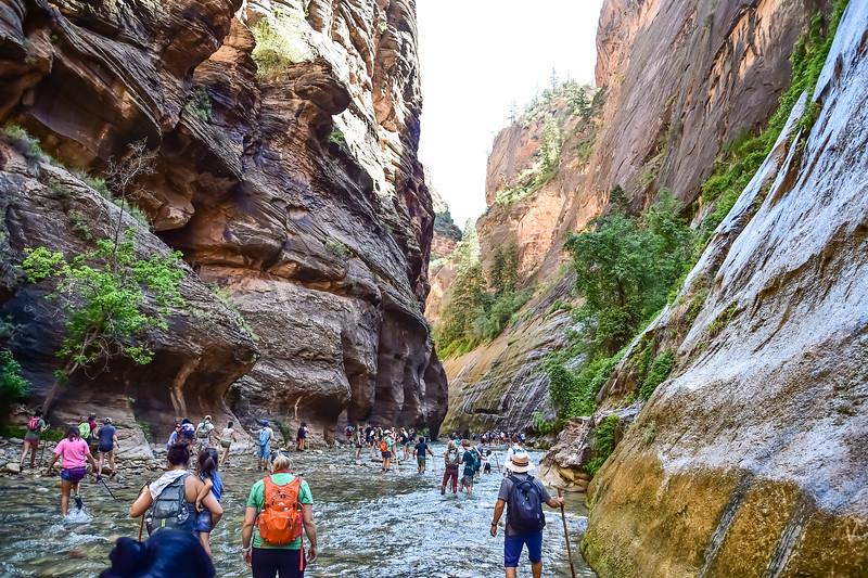 2019 Grand Canyon-54.jpg