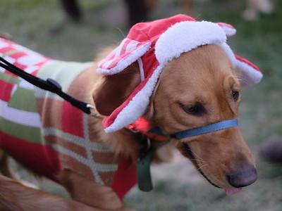 Christmas Parade Arroyo Grande