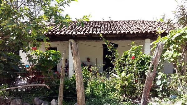 Surcos De Caña, Honduras, 2016