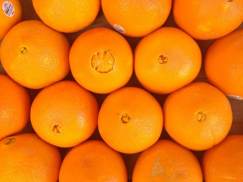 Oranges (iPhone 4S)