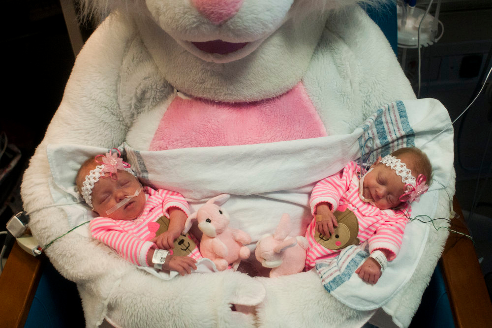 Description of . Six-week-old twins Piper, left, and Penelope Richert are held by the Easter Bunny Friday, March 29, 2013 at Hurley Children's Hospital in Flint, Mich. Renay Gagleard, administrator of Women and Children's Services at Hurley, dressed as the Easter Bunny and visited kids in the Children's Hospital throughout the morning.  (AP Photo/The Flint Journal, Jake May)
