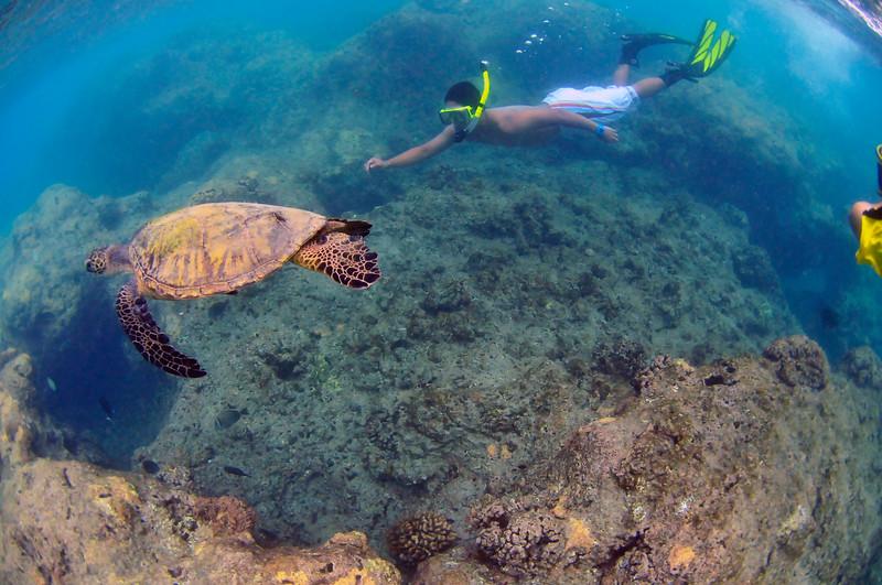 Hawaii - Hanauma Bay-30.JPG