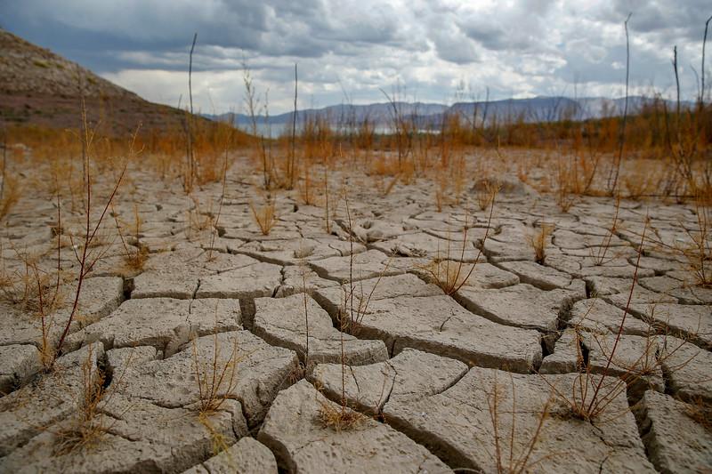 Nevada Drought Forum