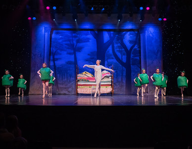 Robert Ivey Ballet: The Princess and the Pea