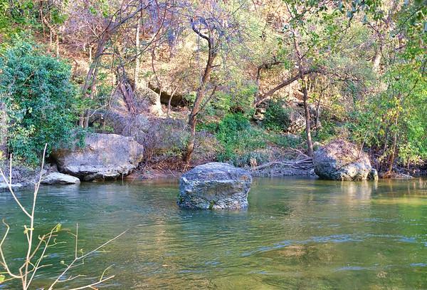 Fall Hiking With Zoe at Rivary Park