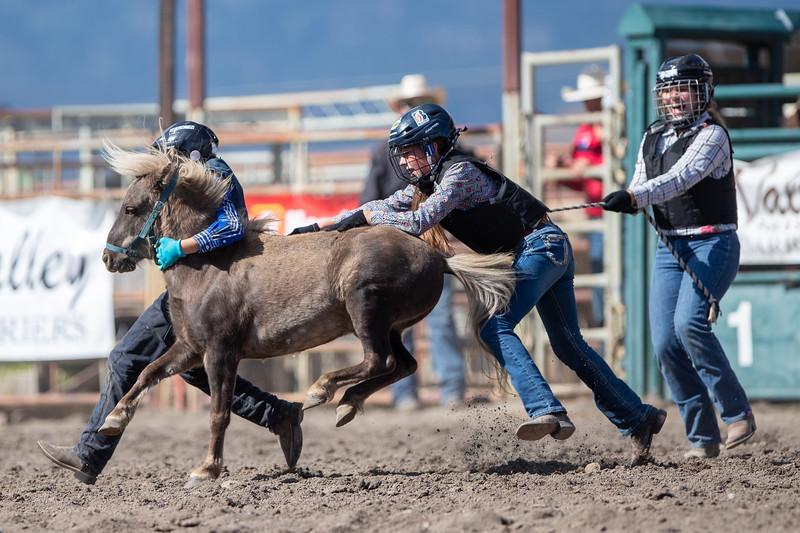 2019 Rodeo 1 (812 of 1297).jpg