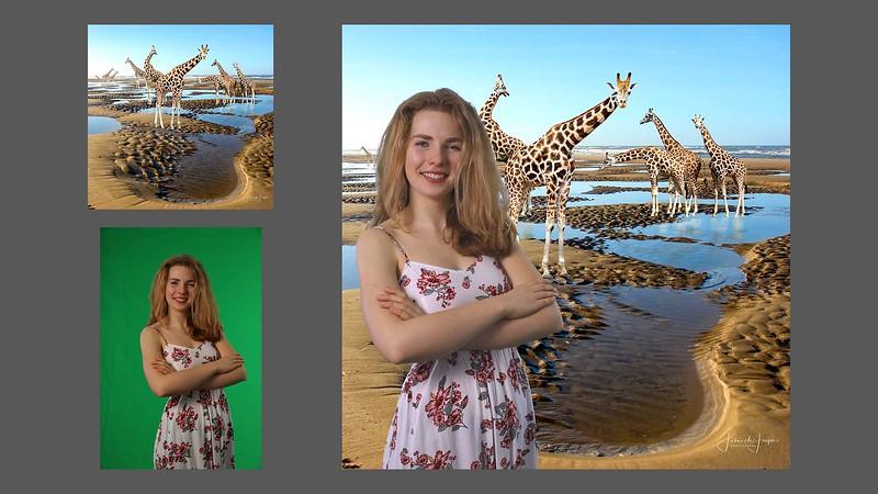 bergen aan zee giraffen 3luik
