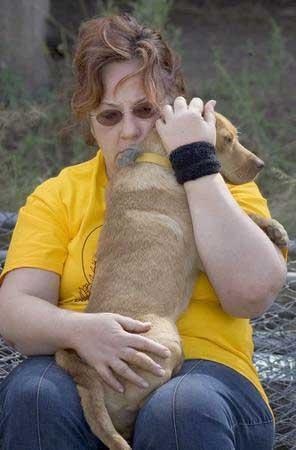 Taras Babies Dog Rescue