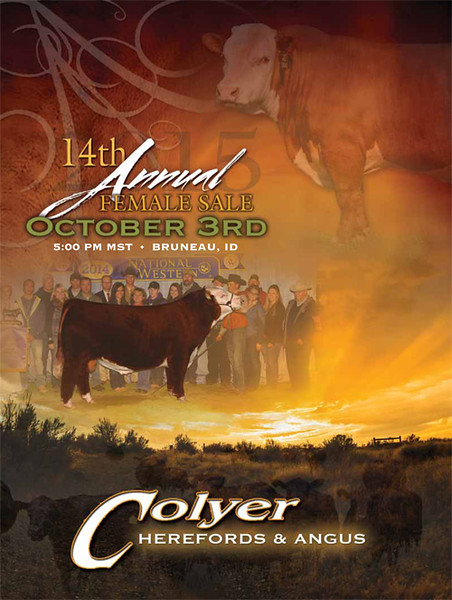 2015 Colyer Herefords Fall Female Sale