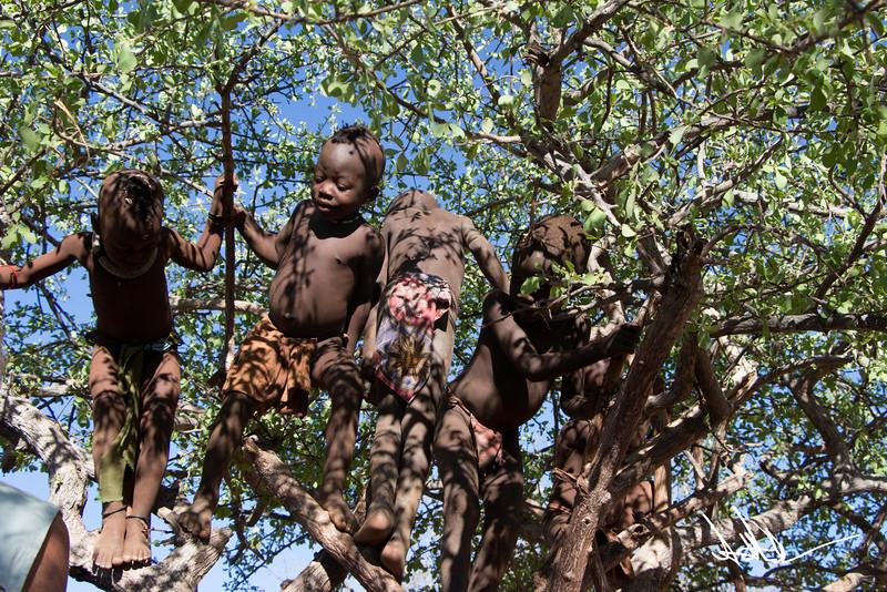 HimbaS-11.jpg