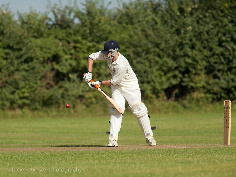 110820 - cricket - 285-2.jpg