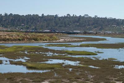 Wet Land and Coast Walks