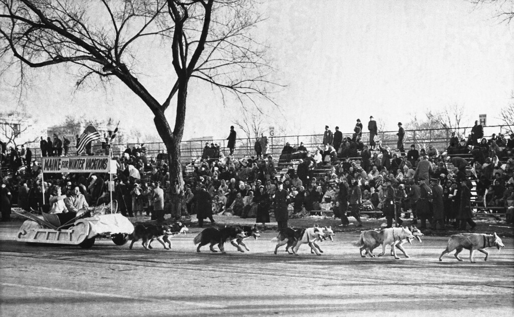 . Alaskan huskies pull the State of Maine float along Constitution Ave. during the inaugural parade for President John F. Kennedy, Jan. 20, 1961 in Washington. (AP Photo)