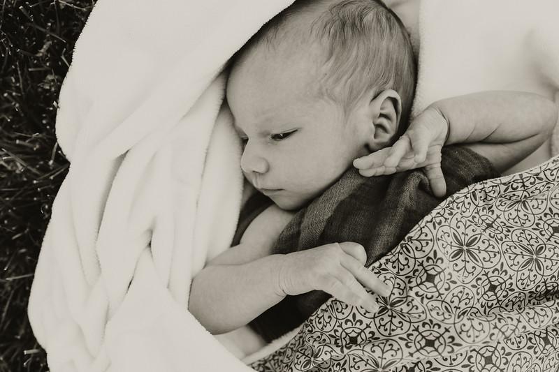 www.jennyrolappphoto.com_Baby_Frankie-36.jpg
