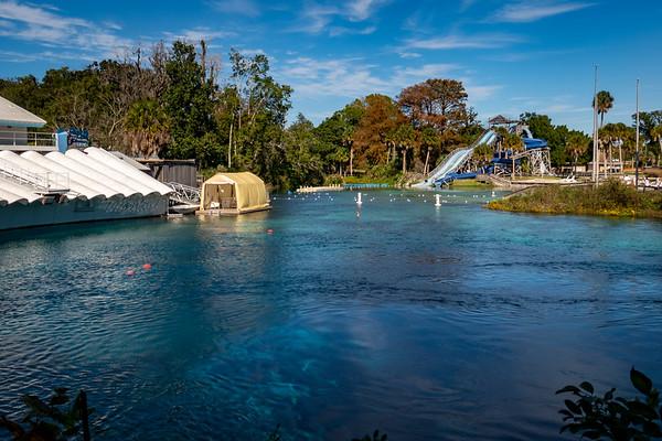 Weeki Wachee Springs Mermaid Theater and Buccaneer Bay Waterpark