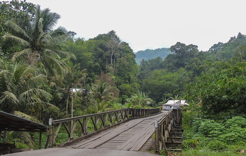 Borneo-2014-202.jpg