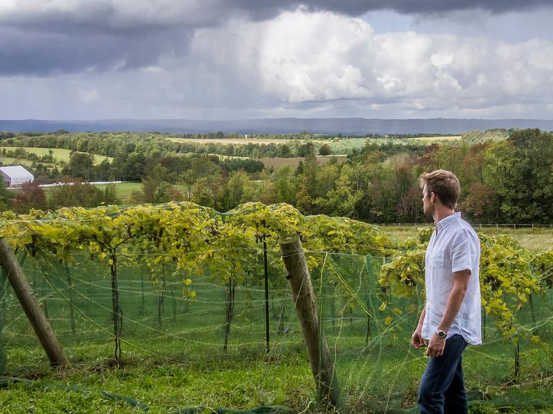 roost wine company michael horizontal.jpg