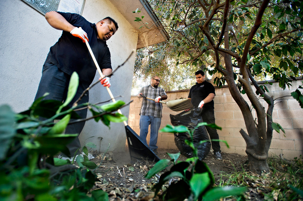 . Home Depot volunteers, from left, Cesar Vital, 40, Alex Murillo, 31, and Mario Patlan, 20, help cleanup the backyard for a veteran, Fidel Sanchez, a member of VFW Post 8070, at his Azusa home on Friday morning, Nov. 8, 2013. (Photo by Watchara Phomicinda/San Gabriel Valley Tribune)