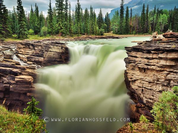 Athabaska Falls - Jasper (black & white version available)