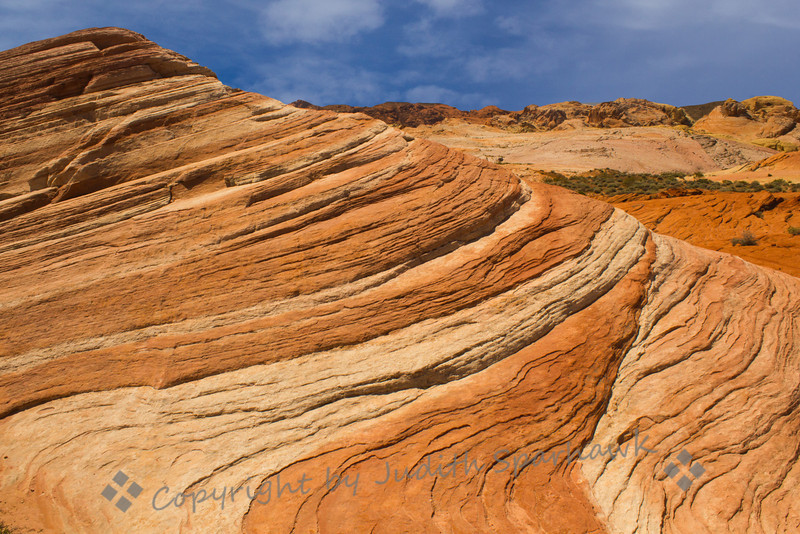 Sandstone Swirl ~ One of the many striated formations in Valley of Fire in Nevada.