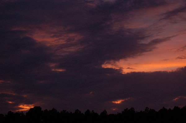 Night Sky at Skybrook