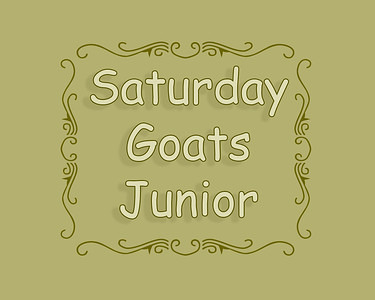 DEC LB 2018 Sat Goat Tying Junior