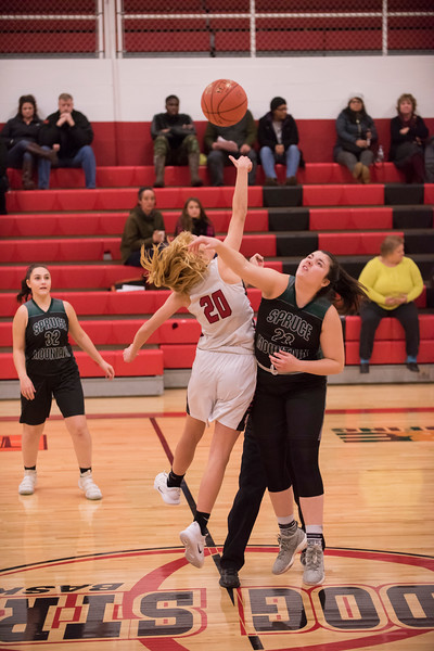 2019 Girls JV Basketball:  Hall-Dale vs Spruce Mtn
