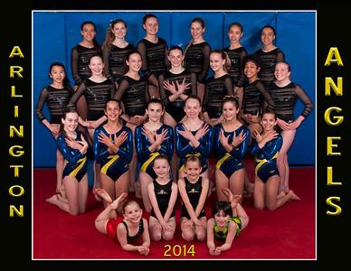 Angels 2014