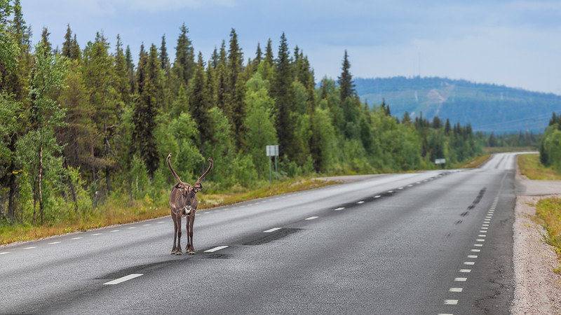 Narvik to Kiruna Route, Sweden