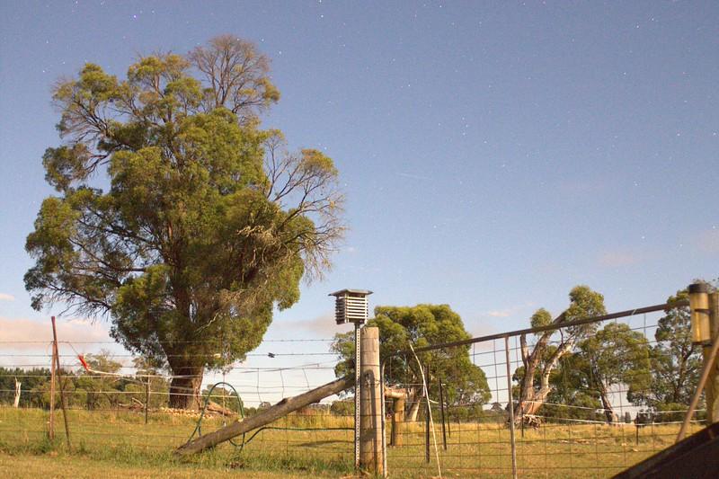 NSW_0093.jpg