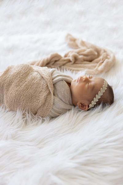 baby-evelyn+jocelyn-1572.jpg