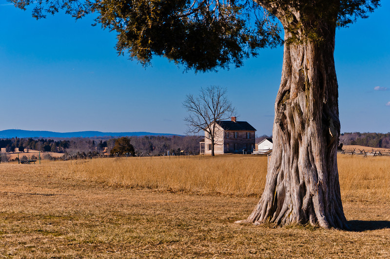 View of Henry House, Manassas Battlefield, Virginia