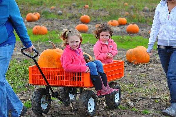 Farm  Oct 25