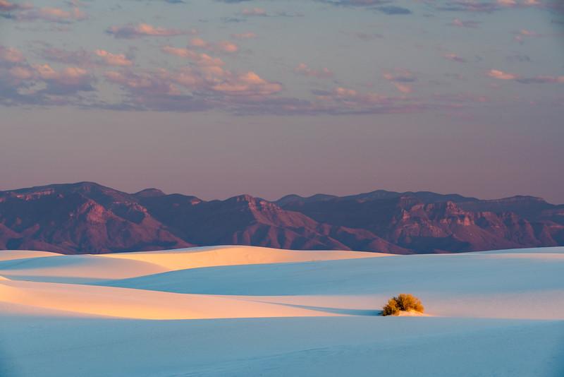 Sunrise Light on Large Dunes