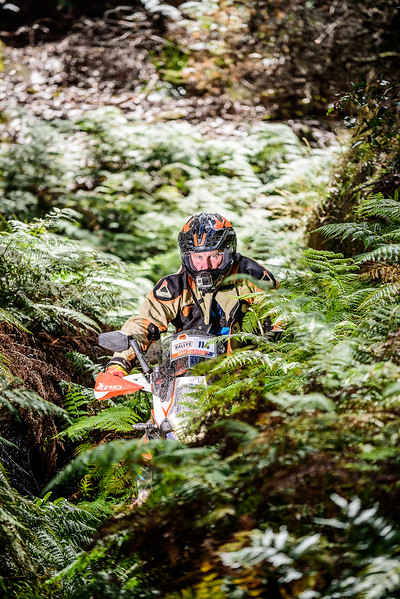 2017 KTM Adventure Rallye (136 of 767).jpg