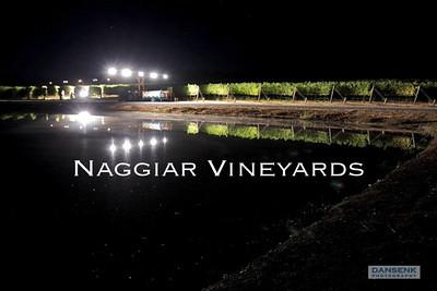 2009 Harvest Video