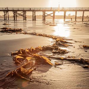 Goleta Beach Park, Santa Barbara, CA