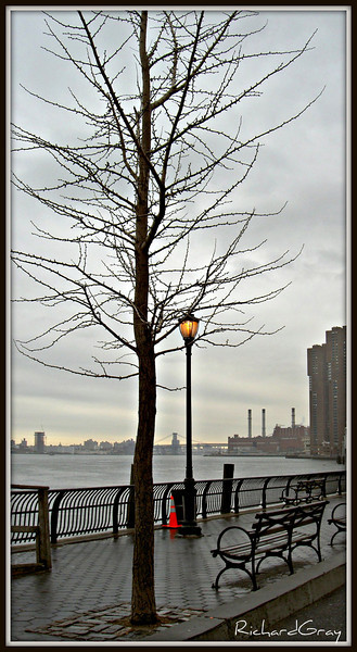 Early Spring, NYC 