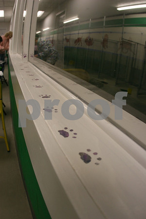Animal Shelter Painting - January 2008