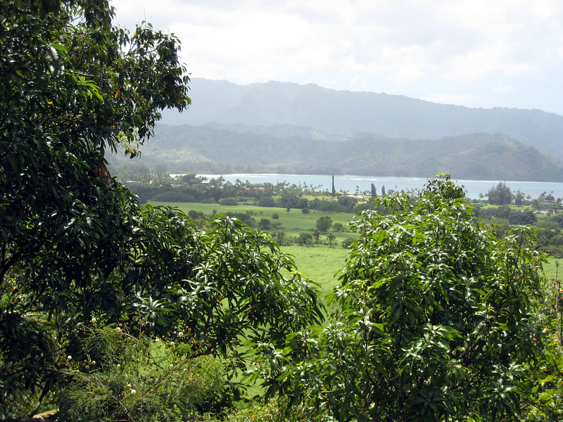 Hanalei Valley - South Pacific, Uncommon Valor