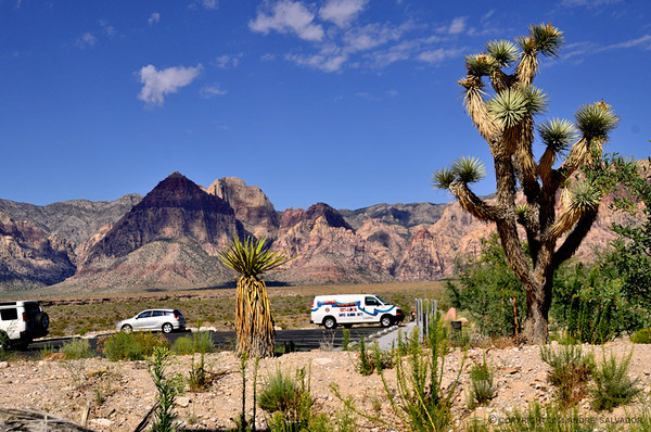 NEVADA - RED ROCK CANYON STATE PARK AND SPRING MOUNTAIN RANCH STATE PARK.
