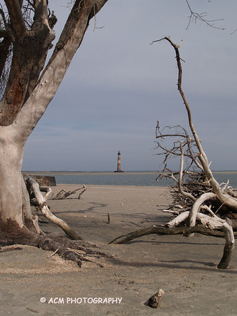 Lighthouses - Morris Island