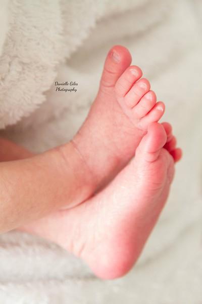 _4_website_newborns-33.jpg