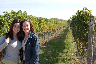 Long Island Vineyard Tours and Luncheon