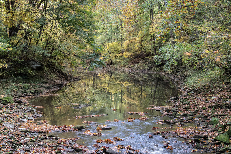 Black River 101320-6.jpg
