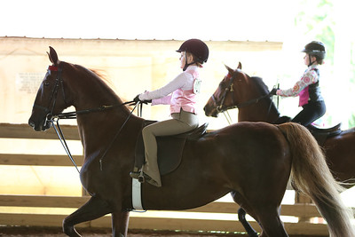 21A) Academy W/T equitation 8 years old & under